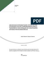 Tese Dout. Paulo Guterres Eflorescencias.pdf