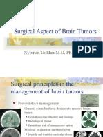 Brain Tumor Surgical Aspect