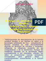 Fisiologia Celular-Dr[1]. ANDONAIRE
