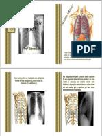 Patologias Do Tórax