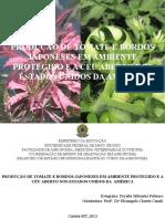 TCC Apresentação - ORIGINAL.pptx