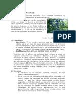 caracteristicas del arandano