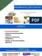 Lípidos y Membranas Biológicas