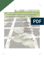 Produccion de Plantines Florales en Sistema Flotante