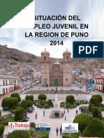 Situacion Laboral de Jovenes en La Region de Puno