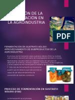 APLICACIÓN DE LA FERMENTACIÓN EN LA AGROINDUSTRIA.pptx