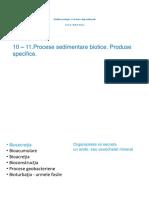 10-11Procese_biotice