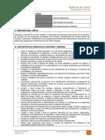Dct-001.in Perfil de Cargo Jefe de Operaciones