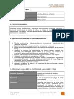 Dct-001.in Perfil de Cargo Jefe Departamento Sistemas de Gestin