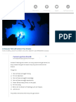 10 Reasons YOU CAN Achieve Your Dreams - Pick the Brain | Motivation and Self Improvement.pdf