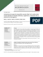 Aislamiento de Cepas de Aspergillus Sección Nigri en La Yerba Mate