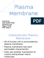 Plasma Membrane Fix 2