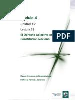 Lectura 33 - El Derecho Colectivo en La Constitución Nacional