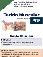 Tecido Muscular -