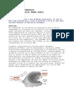 RESPALDO-PEREZRUBIO-3-23.pdf