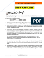 B737-Flying_In_Turbulence.pdf