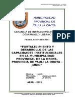 Perfil Fortalecimiento de Capacidades Institucionales