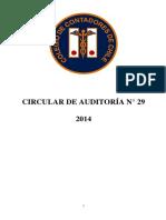 Circular-de-Auditoría-N°-29-Informe-Excepción-Impuestos-Diferidos-1.pdf