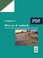 Using Wetlands Wisely.pdf