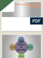 CLASIFICACION-DE-LAS-EMPRESAS (1).pptx