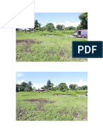 Picture Land Clearing