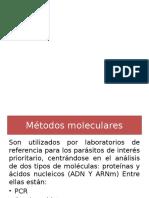 Tecnicas moleculares
