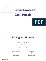 Mechanisms of Cell Death 2012