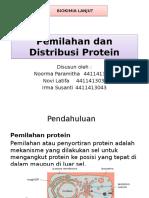 Ppt Biokim Kel 4 Protein