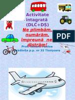 activitate_integrata_dlcds