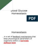 Ch 14 a Glucose Regulation