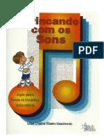 Brincando Com Os Sons - Livro