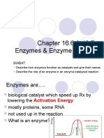 Enzymes and Rest Notes 4