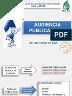 audiencia_final_2012.pdf