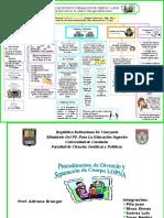 91602277 Esquema Divorcios Reforma Lopnna 1