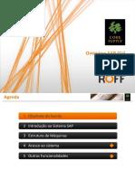 Opportunity Overview SAP GUI V1