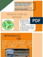 Diapositiva Biogas