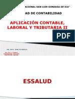Aplicación Laboral II-2015