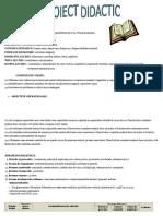 Proiect Didactic MEM