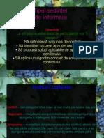 0_0_0_sedinta_cu_parintii_1 (1)