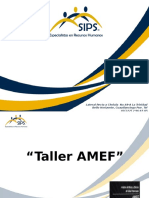 AMEF Presentación 1