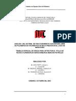 TESIS_COMPLETA_presentada.doc