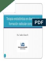 Tratamiento Endodontico en Dientes Con Formacion Radicular Completa PPT