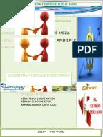 ECOSISTEMA-Y-ENFOQUE-ECOSISTEMICO.docx