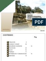 1. Indicadores Amazonas_2015