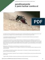 Mosquitos Genéticamente Modificados Para Luchar Contra El Zika _ Euronews, Science