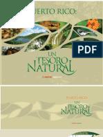 MAPFRE 2009 rev.pdf