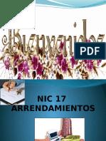 NIC17