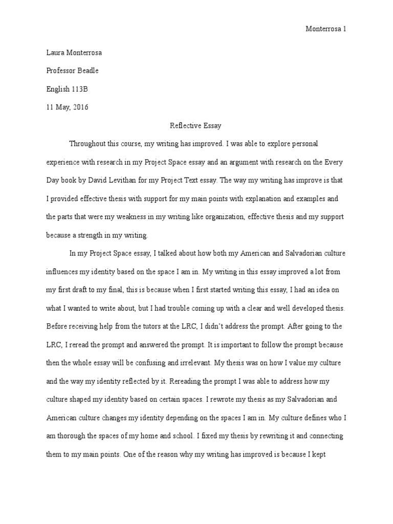 my home essay in english