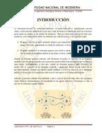 Informe 6 de Quimica II