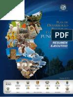 Resumen Ejecutivo Plan de Desarrollo Concertado Regional Al 2021